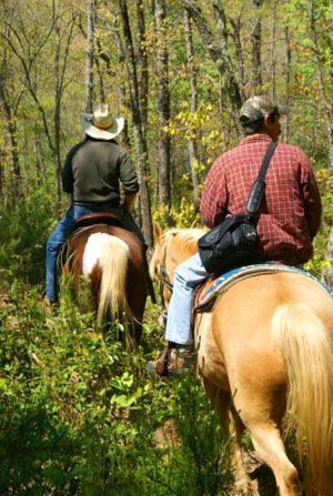 Kanawha Valley Outdoor Equestrian Adventures